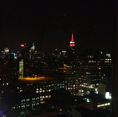 View from the Standart. New York
