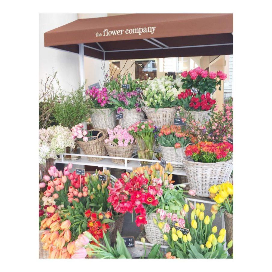 Spring leweekend Munich flowers theflowerscompany